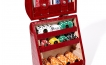 Poker Set in Red Crocodile Leather (4)